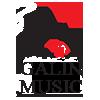 گلین موزیک | دانلود آهنگ ترکی