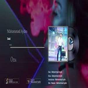 دانلود آهنگ ترکی محمد آیدین بنام دلی