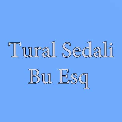 دانلود آهنگ ترکی تورال صدالی بنام بو عشق